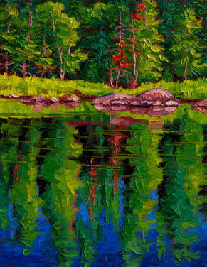 Summer Reflections (oil, 12x16 in, Sold)
