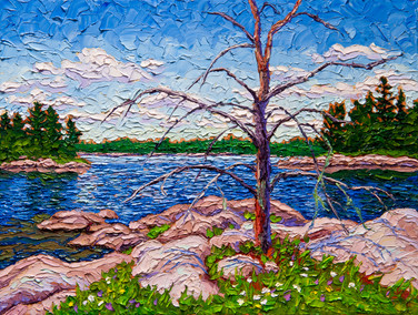 Jack Pine Relic (oil, 12x16 in, Sold)