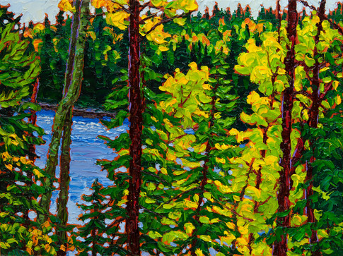 Through the Trees (oil, 12x16 in, Sold)