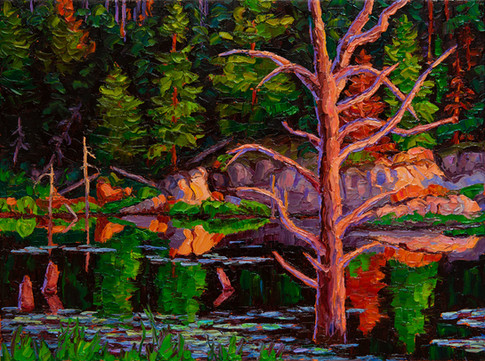 Beaver Pond at Sunset (oil, 12x16 in, available)