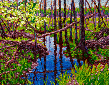 Beaver Country (oil, 11x14 in, Sold)