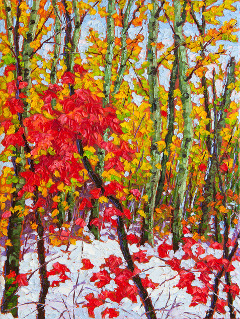 Autumn Snow, Assiniboine Forest (oil, 12x16 in)