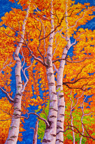 Fall Birches (oil, 24x36 in, Sold)