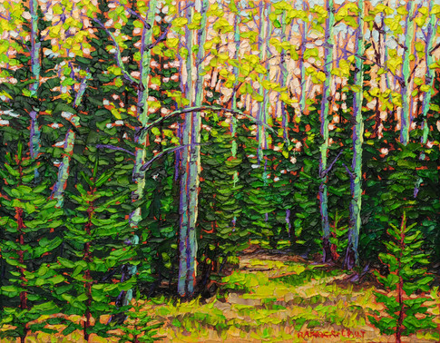 Forest Clearing (oil, 11x14 in, Sold)