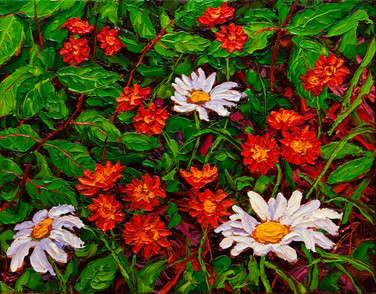 Orange Hawkweed and Daisies (oil, 11x14 in, Sold)