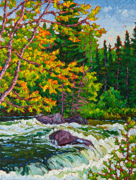 Rapids, Rushing River (oil, 12x16 in)