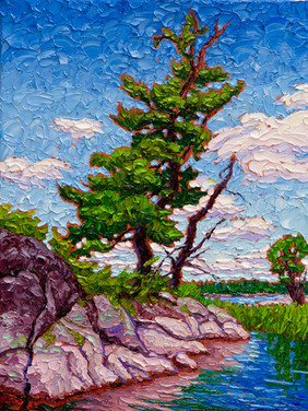 Lone Pine (oil, 12x16 in, Sold)
