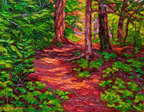 Forest Trail (oil, 11x14 in, available)