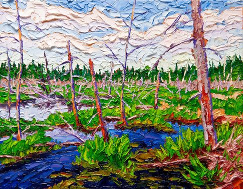 Beaver Swamp (oil, 11x14 in, available)