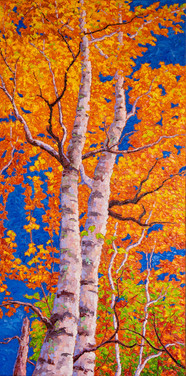 Autumn Birches II (oil, 18x36 in, Sold)