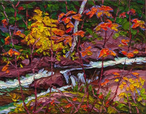 Splash of Colour (oil, 11x14 in, Sold)