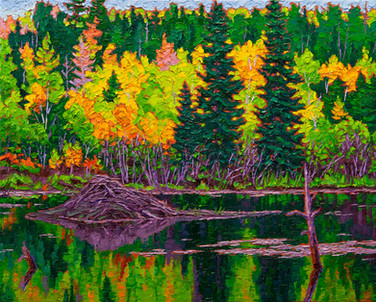 On Golden Pond (oil, 16x20 in, Sold)
