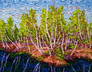 Birches in Spring (oil, 11x14 in)