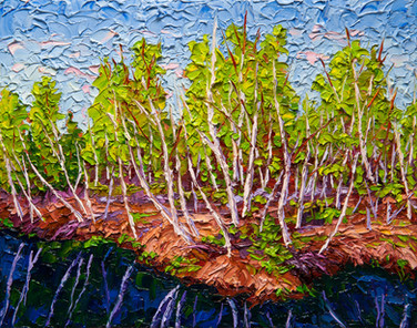 Birch Stand (oil, 11x14 in, available)