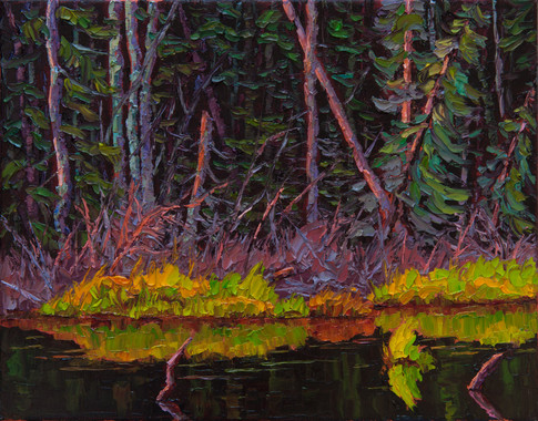 Morning Stillness on the Beaver Pond (oil, 11x14 in)