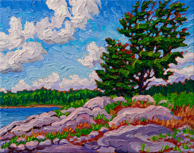 Island Pine, Winnipeg River (oil, 11x14 in)