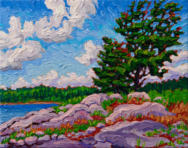Island Pine, Winnipeg River (oil, 11x14 in)