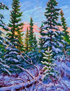Morning Light (oil, 11x14 in)