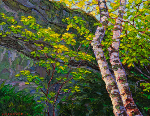 Rock Face with Birches (oil, 11x14 in, Sold)