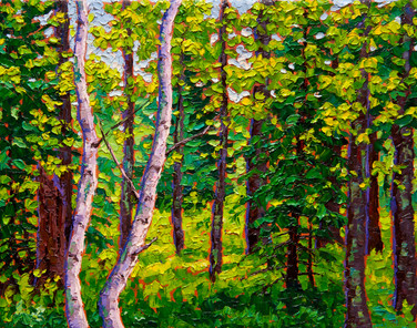 Forest Light (oil, 11x14 in, Sold)