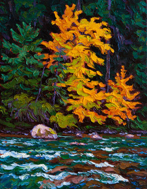 Autumn Highlights, Stamp River (oil, 11x14 in)