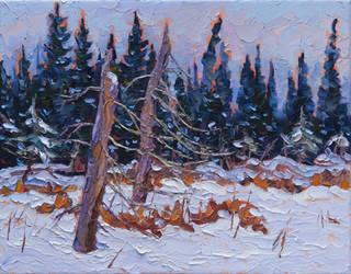 Evening Solitude (oil, 11x14 in)