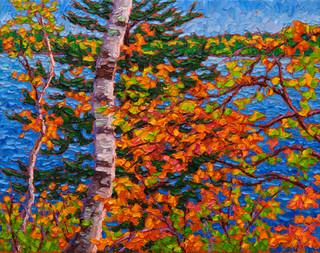 Lakeside Birch (oil, 8x10 in)