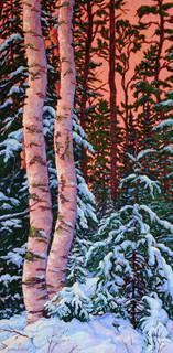 Winter Birches (oil, 20x40 in)