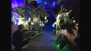 ART NIGHT - FLOWERING TRANSITION -
