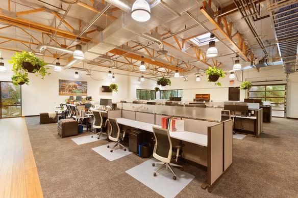 Interior 3.jpg