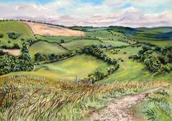 Overlooking Saldescombe Farm