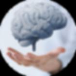 brain-health.png