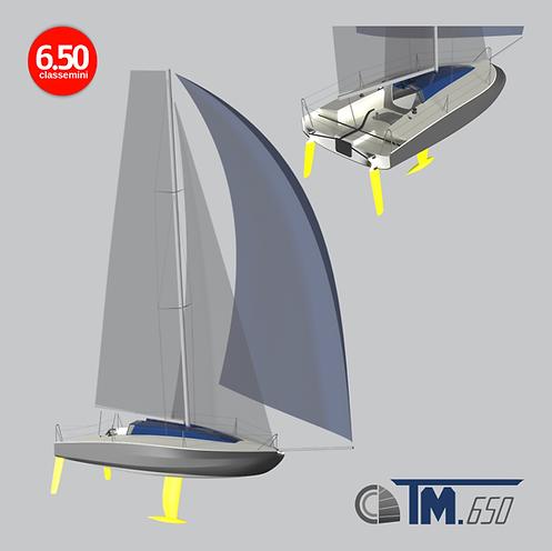 TM650-2.png
