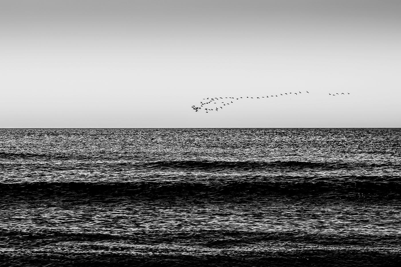 LA ROUTE DE L OCEAN