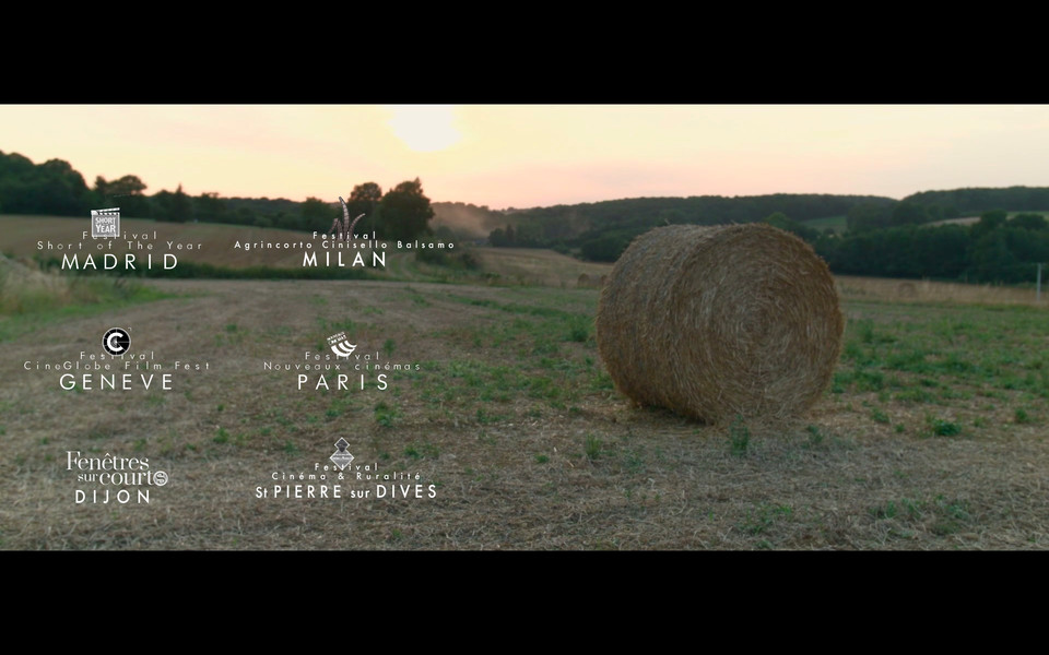 Documentaire - 13' - Cinéma