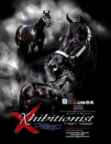 Xhibitionist Ad 3.jpg