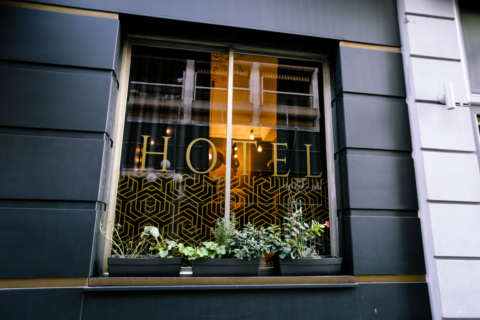 Façade design I Hôtel Acanthe en plein centre de Nice