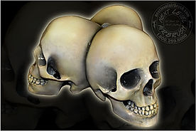 Copy of skullstand3dbase.jpg