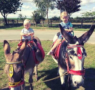 Kenyon Farm Family Fun