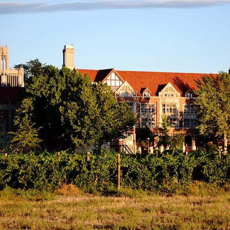 Colorado Wine Country: Beyond the AVAs