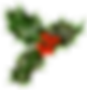 xmas_holly_png_2_by_iamszissz-d8677s5.pn