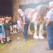 206 - George Keir Shoeing Jock Wilson's Horse