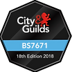 city%20guilds_edited.png
