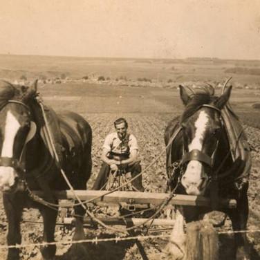 080 - David Younger Drill Harrowing at Kinpauch 1939-45