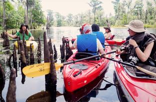 kayak (web).jpg