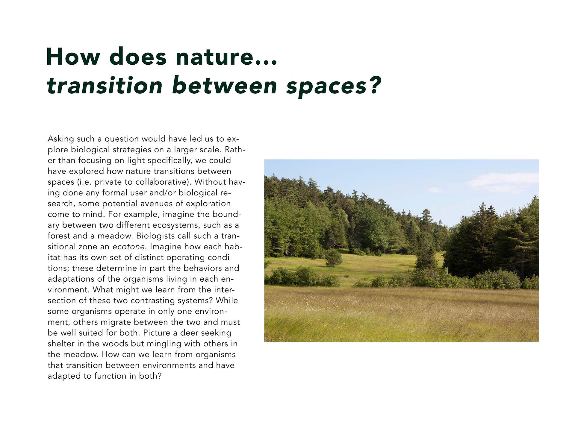 nature space (web).jpg