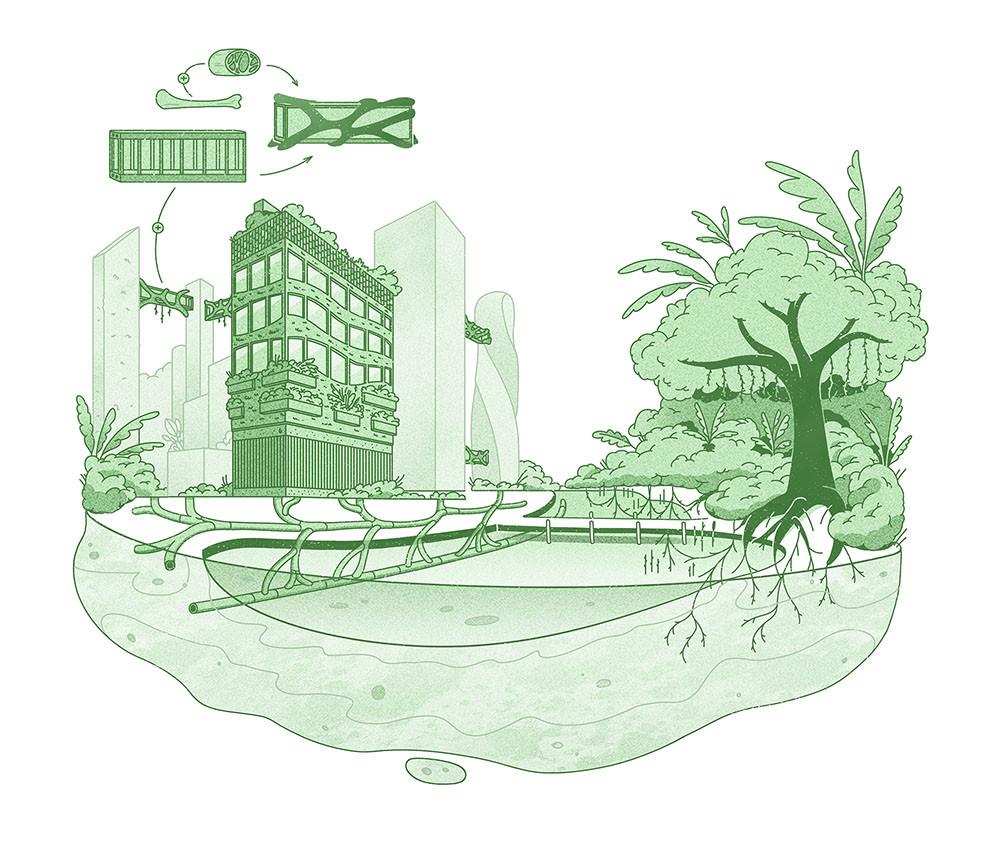 Illustration 2 (low resolution).jpg