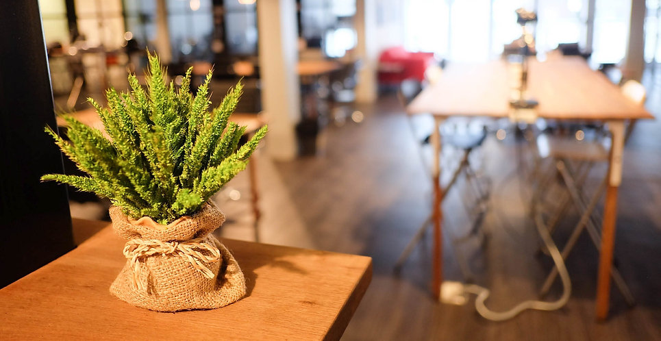 Green feelings at The Work Loft | Coworking space - Meeting room - Private office