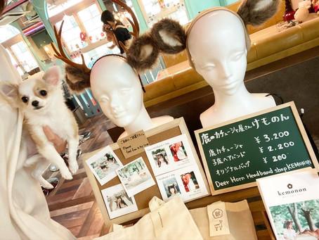 小動物カフェはなはな・ふくろうカフェわたわた で鹿カチューシャ販売開始しました。