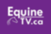 equine tv picture.png